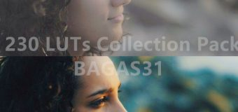 230+ LUTs Collection Pack for Image and Video