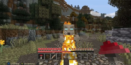 Minecraft 1.12.2 Full Version 3
