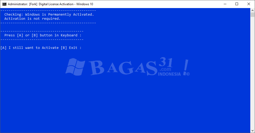 Microsoft Activation Script