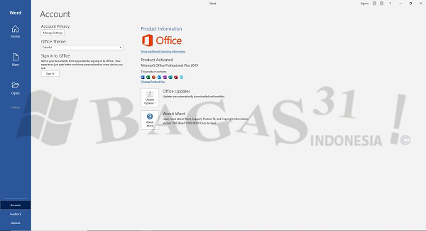 Microsoft Office 2019 Pro Plus 1908 Build 11929.20300