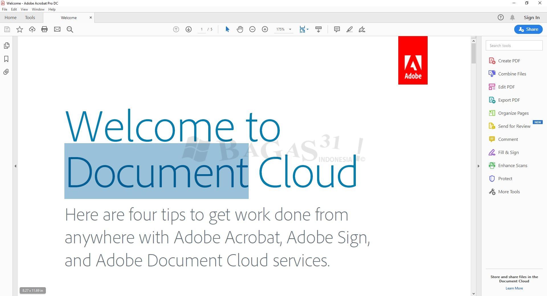 Adobe Acrobat Pro DC 2019.021.20047 Full Version 3