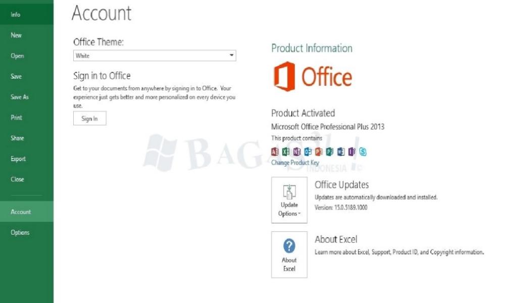 Microsoft Office 2013 Pro Plus 15.0.5189.1000 November 2019 2
