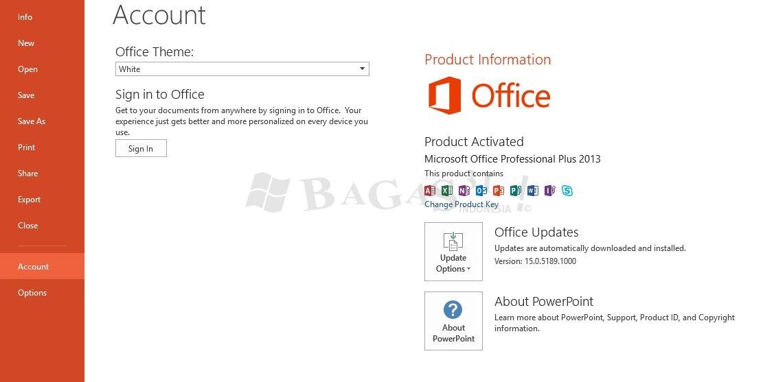 Microsoft Office 2013 Pro Plus 15.0.5189.1000 November 2019 3