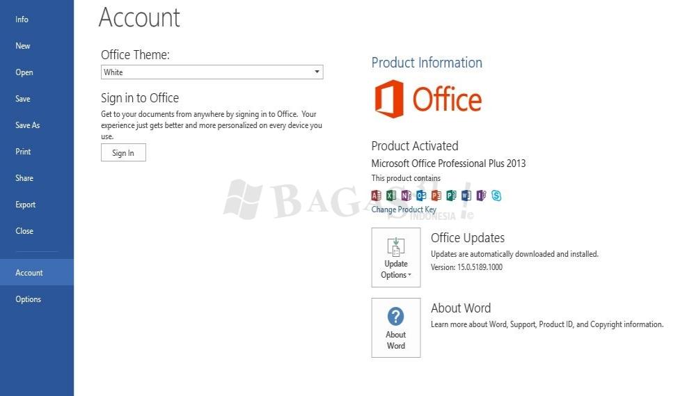 Microsoft Office 2013 Pro Plus 15.0.5189.1000 November 2019 4