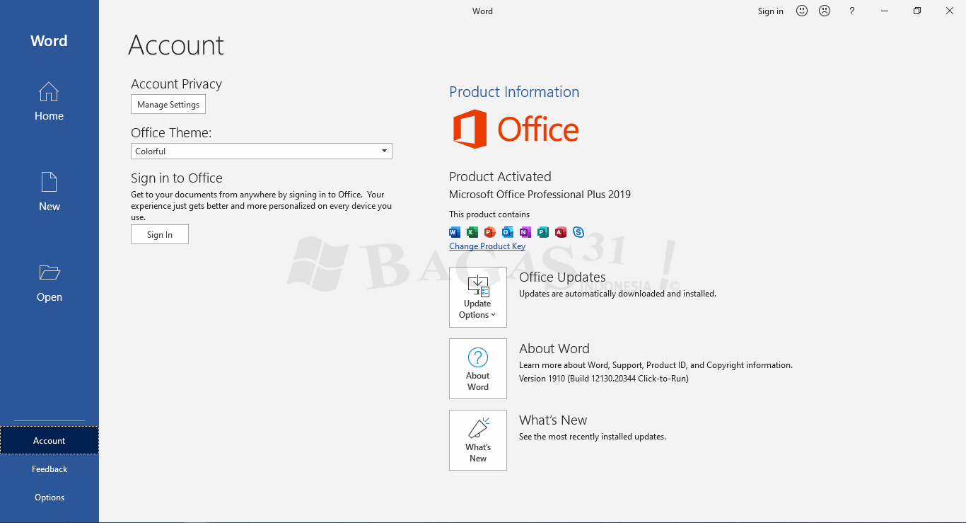 Microsoft Office 2019 full version
