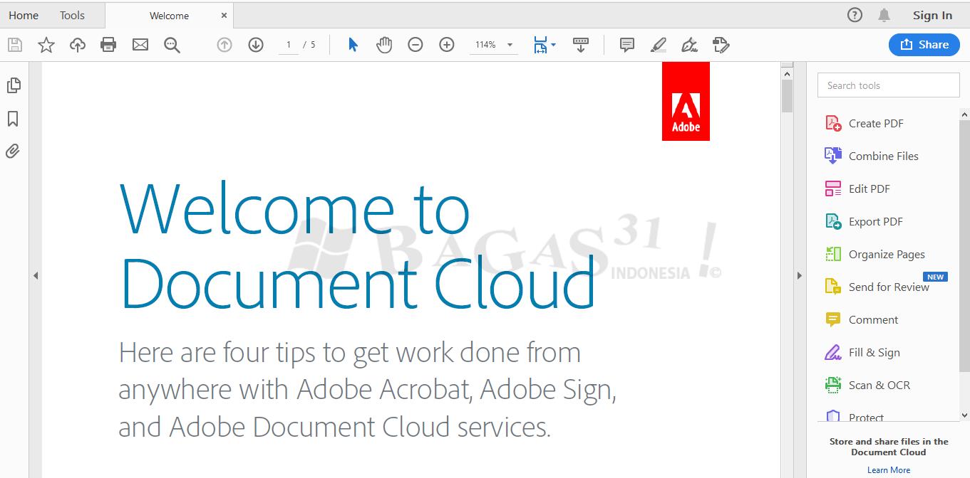 Adobe Acrobat Pro DC 2019.021.20058 Full Version 2