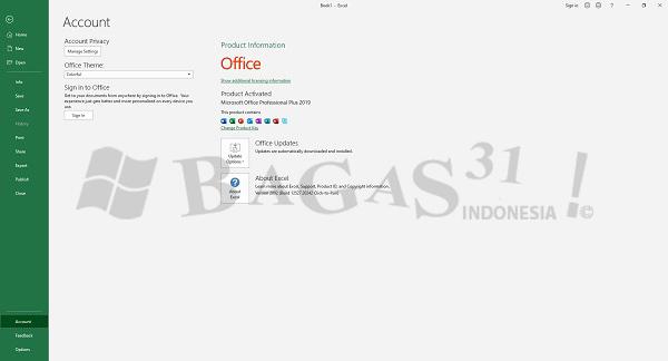Microsoft Office 2016-2019 Pro Plus v2002 Build 12527.20242