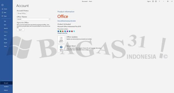Microsoft Office 2019 Pro Plus v2003 Build 12624.20466 April 2020
