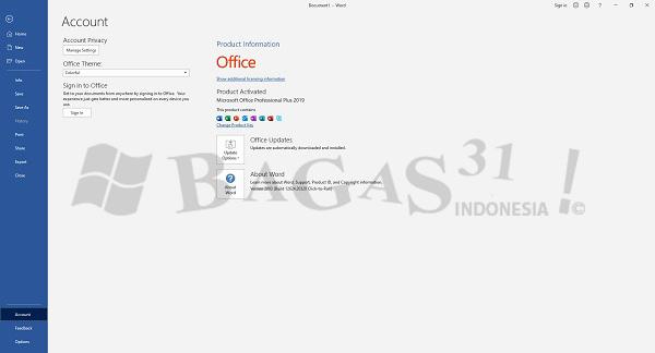 Microsoft Office 2019 Pro Plus v2003 Build 12624.20520 April 2020