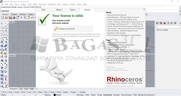 Rhinoceros 6.25