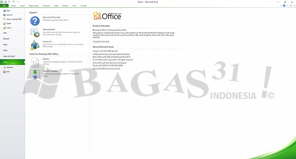 Microsoft Office 2010 Pro Plus SP2 Update Juni 2020