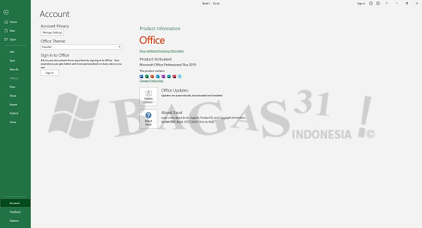 Microsoft Office 2019 Pro Plus v2002 Build 12527.20720 Juni 2020