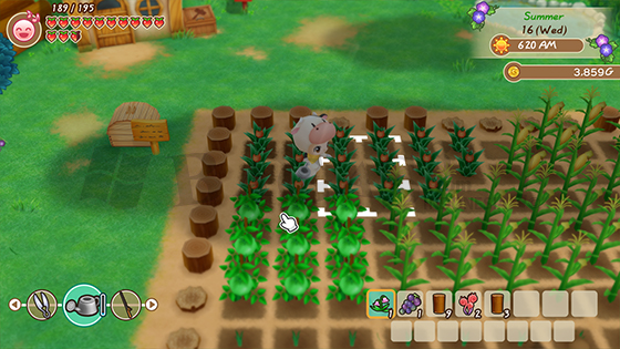 Story of Seasons Friends of Mineral Town New Update DLC