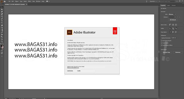 Adobe Illustrator 2020 v24.2.2.518 Full Version