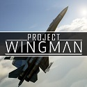 Project Wingman Full Version