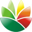 EximiousSoft Logo Designer 3.86 Full Version