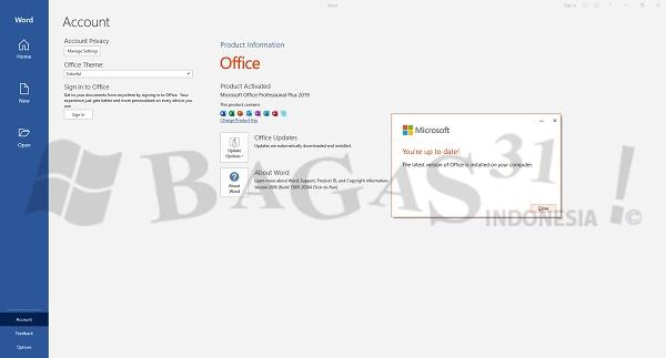 Microsoft Office 2019 Pro Plus v2002 Build 12527.22017 Agustus 2021